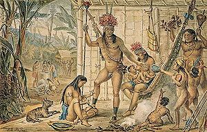 grupos indigenas americanos: