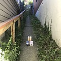 Delivering food to a friend in isolation during Covid19 lock down in Dunedin New Zealand.jpg