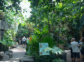 Denver Zoo's Tropical Discovery.png