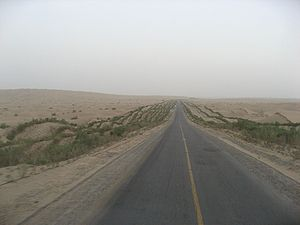 Tarim Desert Highway - Along the highway. The vegetation on each side can be seen, as well as a blue pump house in the distance.