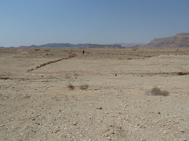 File:Desert Kite5.jpg