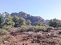 Devil's Bridge Trail, Sedona, Arizona - panoramio (54).jpg