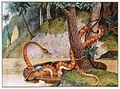 Die Königsschlange.jpg