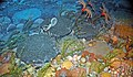 Diorama of a Devonian seafloor - Bumastus trilobite, coiled cephalopod, criniods, brachiopods, corals, bryozoans, algae 2 (30717354647).jpg