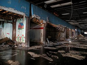 """Dixie Square Mall - """"Block B"""" storefronts inside Dixie Square as they appeared in 2009, showing a severe state of decay"""