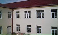DmanisiN2school5.jpg