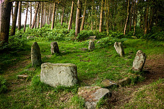 Doll Tor Bronze age stone circle in Derbyshire