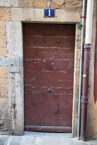 Doors of Lyon, France 20.jpg