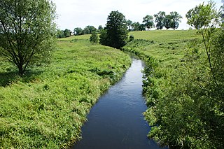 Drawa river in Poland
