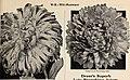 Dreer's garden book for 1941 (1941) (20841408760).jpg