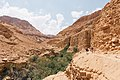 Dry Mountainsides (Unsplash).jpg