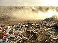 Dump heap outside Ivano-Frankivsk by BOBO (03) - panoramio.jpg