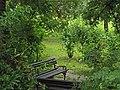Dunavski park, spomenik prirode, Novi Sad 4.jpg
