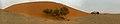 Dune 45 (37709459602).jpg