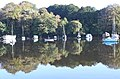Early morning reflections on the Penryn River - geograph.org.uk - 1544559.jpg