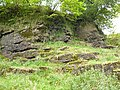 East Kirkton Quarry in West Lothian in Scotland 1.jpg
