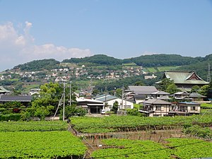 East slope of Mount Atago Kofu City.JPG