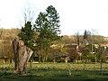 Eaucourt-sur-Somme église (aperçue depuis château) 1.jpg