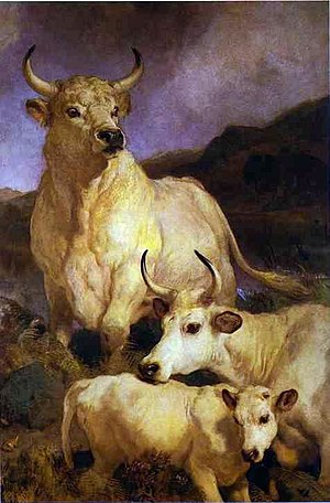 Chillingham cattle - Edwin Landseer: The Wild Cattle of Chillingham (1867, oil on canvas).