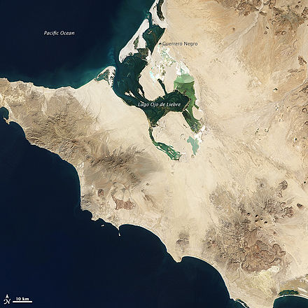 Guerrero Negro is near a lagoon frequented by Grey whales El Vizcaino Biosphere Reserve Landsat picture annotated.jpg