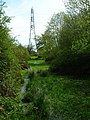 Electricity Pylon, Wey and Arun Junction Canal - geograph.org.uk - 779240.jpg