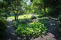 Elk Rock Garden-4.jpg