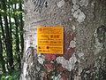 Emergency access M023.jpg