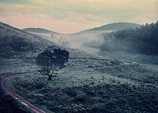 Kodaikanal–Munnar Road road in Tamil Nadu, India