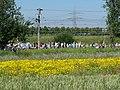 Ende Gelände Nord-Süd-Bahn blockade 23-06-2019 45.jpg