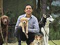 Entrenamiento Canino para razas grandes y pequeñas.jpg