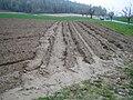 Erosion Furchen005.JPG