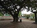 Essex Crescent Rest Garden 04.jpg