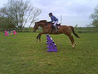 Evie Gullis Jumping Her Horse.JPG