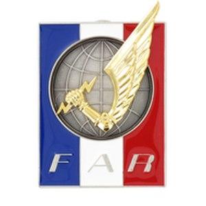 Rapid Action Force (FAR) - Image: F action rapide