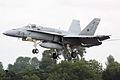 F18 Hornet - RIAT 2009 (4172136585).jpg