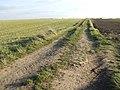 Farm track - geograph.org.uk - 600540.jpg