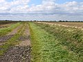 Farm track and ditch, Moulton Fen, Lincs - geograph.org.uk - 1480517.jpg