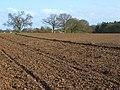 Farmland, Tilehurst - geograph.org.uk - 747329.jpg