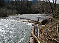 Female Employee Surveying Log across Middle Fork River, Willamette National Forest (34727480812).jpg
