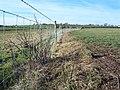 Fenced Footpath. - geograph.org.uk - 119896.jpg