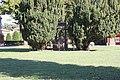 Ferrara, cimitero monumentale della Certosa (54).jpg