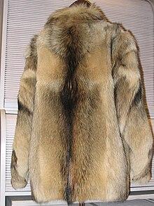 File-Dog fur skin jacket (back).JPG