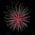 Fireworks (6739605753).jpg