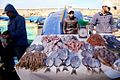Fish market in Essaouira.JPG
