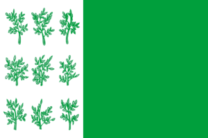 Bogoroditsk - Image: Flag of Bogoroditsk (Tula oblast)