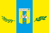 Flag of Vilnyansk.PNG