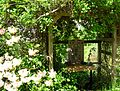 Flickr - brewbooks - Garden shrine - John M's garden (1).jpg