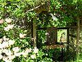 Flickr - brewbooks - Garden shrine - John M's garden (1).jpg