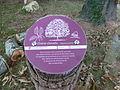 Floirac, sentier botanique au Domaine de La Burthe.JPG
