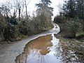 Flooded lane, near Hayne House - geograph.org.uk - 1719360.jpg